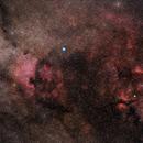 Deneb + Sadr Region in Cygnus,                                Michael S.