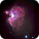 Great Orion Nebula,                                Gus Tepper