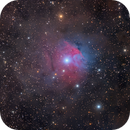 The Strawberry Nebula - VdB 38,                                Eric Coles (coles44)
