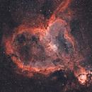 IC 1805 Heart Nebula,                                Charles Fichter