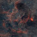 Wide Field Sh2-101, Tulip Nebula Region,                                Marzio Bambini