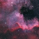 NGC 7000,                                Константин