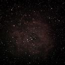 Rosette Nebula,                                David Moulton