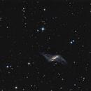 NGC 660,                                Dan Wilson