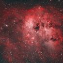 Tadpoles Nebula, IC410,                                KIJJA JEARWATTANAKANOK