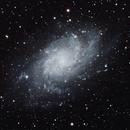 M33,                                DUSTIN WILLIS