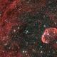 Crescent Nebula,                                pterodattilo
