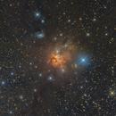 NGC 1579: Northern Trifid Nebula,                                Toshiya Arai