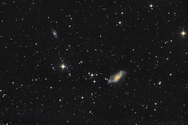 NGC 2146 - widefield,                                Gotthard Stuhm