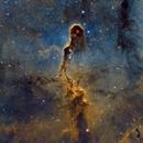 The Elephant Trunk Nebula IC-1396 Mosaic,                                Iñigo Gamarra
