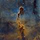 The Elephant Trunk Nebula IC-1396 Mosaic (REPROCESSED),                                Iñigo Gamarra