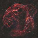 """""""Spaghetti Nebula"""" Sh2-240 / Simeis 147,                                John Travis"""