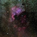 NGC7000 North American Nebula,                                HughP