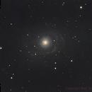 NGC3642,                                Bert Scheuneman