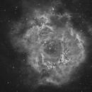 NGC2244 - Rosetta,                                Luca D'Avino