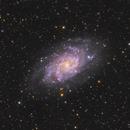 M33 Triangulum Galaxy,                                Young Joon Byun