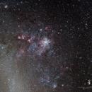 Tarantula Nebula NGC2070,                                Michael Leung
