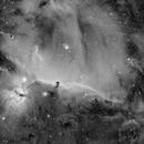 Horse Head and Flame Nebula,                                Shawnigan Lake School