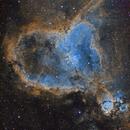 Heart Nebula,                                Mark Kuehner