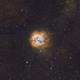 M20 Trifid Nebula in Narrowband,                                Dustin Fleming