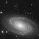 M81,                                Florian APPERT