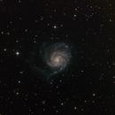 "M101 - ""Pinwheel Galaxy"",                                Charles R. Wright"