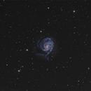 M101 work in progress step 1,                                Piero Venturi