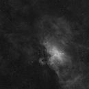 M 16 Newton,                                Edoardo Perenich