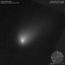Comet 2I/Borisov,                                José J. Chambó
