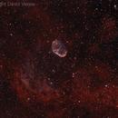 Crescent Nebula,                                Dave Venne