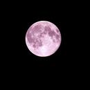 Big Moon,                                Marco Torregrossa