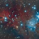 Cone Nebula, LDN1613,                                meteoritehunterjim