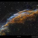 NGC 6992,                                Metsavainio