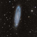 NGC 247,                                Casey Good