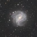 M83 Galaxy,                                André Meneghetti Piedade