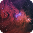 NGC2264 The Cone Nebula & Friends,                                Tim Jardine
