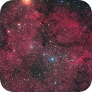IC1396 and the Garnet Star,                                Kiyoshi Imai