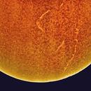 Sun chromosphere Ha-light,                                Stephan Reinhold