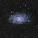 The Triangulum Galaxy,                                TheCharmingQuark