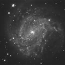 M 83 - Luminance,                                Gerson Pinto