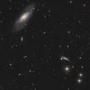 M106, NGC 4217 and friends,                                ChristianDud