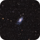 NGC2403 in LHaRVB,                                Georges