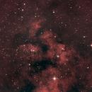 NGC 7822,                                urmymuse