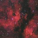 IC1318 / LDN889 - the Butterfly nebula,                                Gianni Cerrato