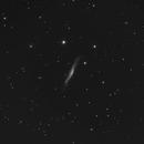 """NGC 3O79  - C11 - HyperStar - Asi 183mm Pro - 130 x 30"""",                                Alain-Bouchez"""