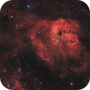 IC410 Tadpoles Nebula,                                Andrea Pistocchin...