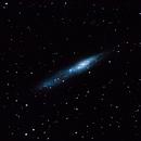 NGC 55 - String of Pearls,                                boemundo