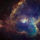 Heart Nebula (work in progress),                                Manuel Huss