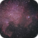NGC7000 (North America Nebula),                                StarSeeker