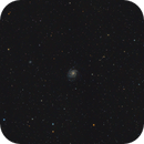 M101 Widefield,                                Andrew Burwell